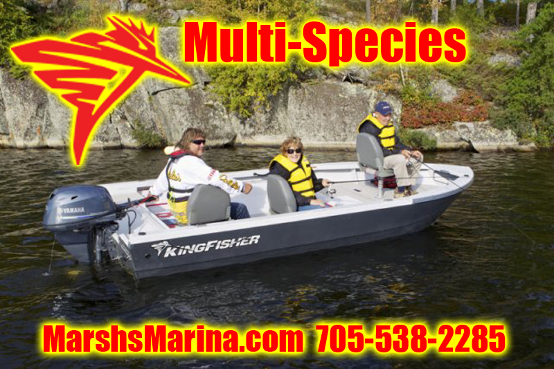 KingFisher Multi-Species Boats For Sale in Ontario